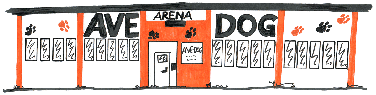 AVE-DOG Arena